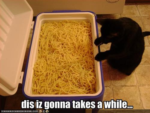funny-pictures-cat-has-a-lot-of-pasta-to-eat